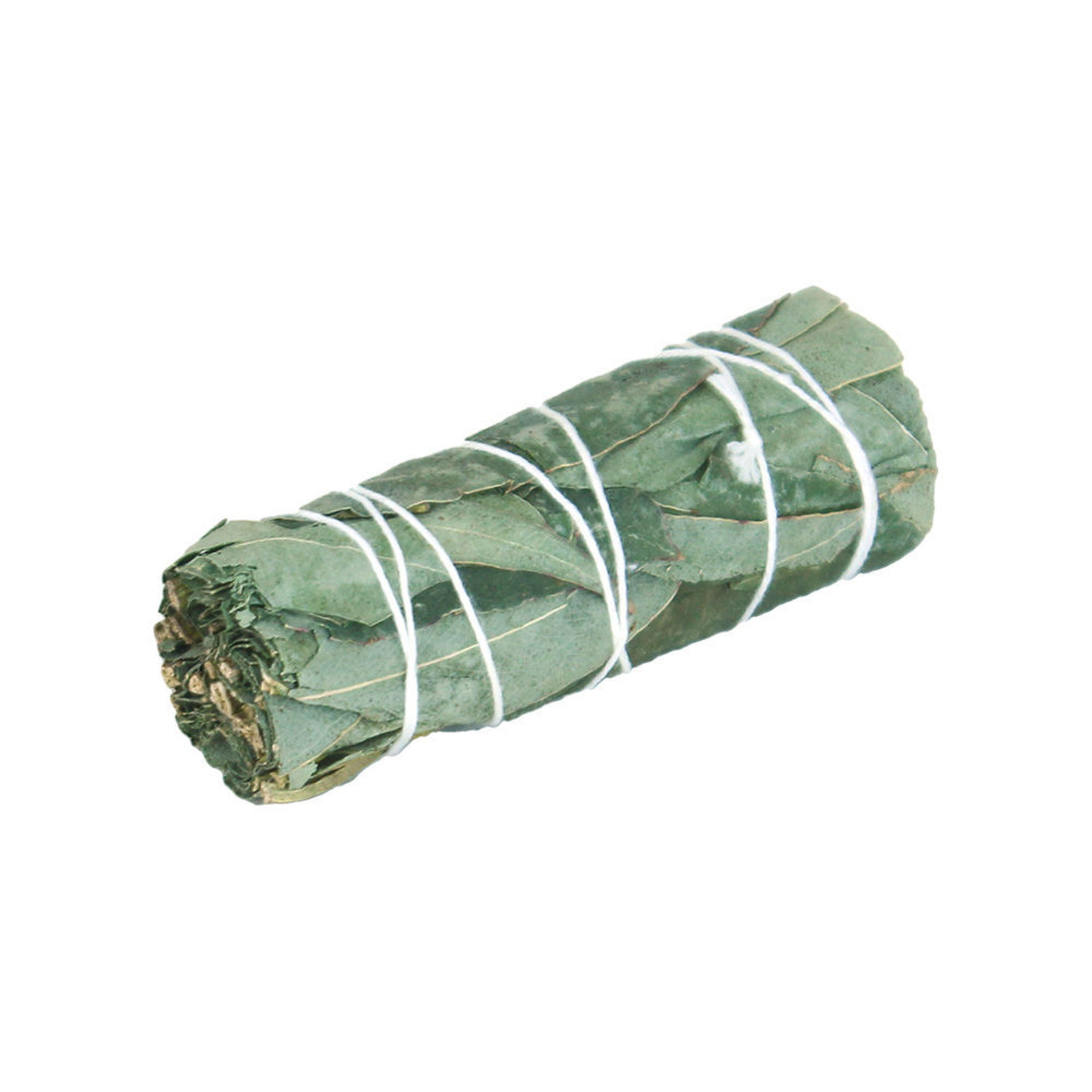Picture of Eucalyptus Smudge Stick